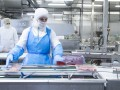 На мясокомбинате в Германии выявили сотни случаев COVID