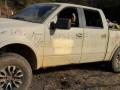 В Мексике в авто нашли тела восьми человек со следами пыток