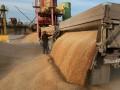 Экспорт зерна из Украины столкнулся с большими проблемами