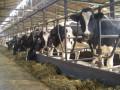 Парламент приблизил законодательство в сельском хозяйстве к европейским стандартам