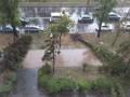 В Киеве пронесся сильный ураган