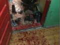 Кровавая резня произошла в общежитии одного из колледжей Львова