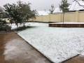 В Виннице выпал первый снег