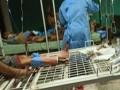 В Венесуэле охранники тюрьмы убили 46 заключенных