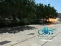 Смертник взорвал бомбу в мавзолее под Тегераном