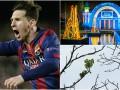 Хорошие новости: цветущие каштаны и зимняя сказка в Киеве, а также чудеса техники от Месси
