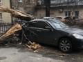 В Киеве дерево упало на Infiniti, в Коцюбинском - заблокировало трассу
