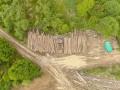 В Украине проведут инвентаризацию лесов