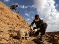 В Ираке нашли более  200 захоронений жертв ИГИЛ