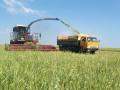 Инвестиции в сельское хозяйство Украины выросли