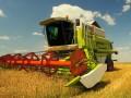 В Одесской области фермер выкосил надпись