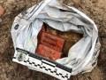 СБУ обнаружила крупный тайник со взрывчаткой в лесу под Херсоном