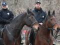 В Киеве на Русановке лошадь конной полиции сбила женщину - соцсети