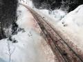 В Норвегии за последние дни поезда убили более 100 оленей