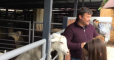 Богдана хотят наказать за инцидент с козой в зоопарке Киева