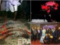 День в фото: летающая свинья-Трамп, платье с Путиным и хождение по углям