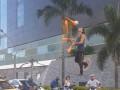 Соцсети поразило видео циркового представления на пешеходном переходе