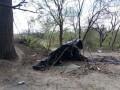 МВД: На Лысой горе сожгли мусор, а не лагерь цыган