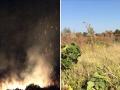 20 га виноградников Лакарена сгорели под Одессой