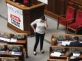 Верховная Рада одобрила правки в закон Савченко