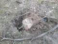 В полиции заявили о предотвращении теракта в Луганской области