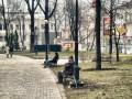 В Киеве в прошлом году высадили 11 тысяч деревьев