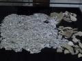 В Болгарии заключенные нашли крупный клад