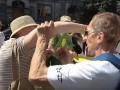 Под КСУ устроили драку противник и сторонник Зеленского