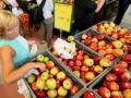 ЕС приостановил помощь фермерам, пострадавшим от санкций РФ