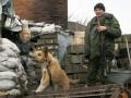 В Горловке жители взбунтовались против пьяных военных РФ