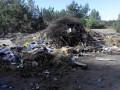 Ветеранам АТО выделили участки на мусорной свалке