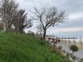 На Одесской набережной вандалы уничтожили десятки деревьев