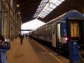 Поездом Мукачево-Будапешт воспользовались десять пассажиров