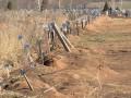 После боев за Дебальцево на кладбище под Енакиево появилось более 700 безымянных могил боевиков