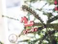 Власти Бельгии разрешили местному Санта Клаусу нарушить карантин