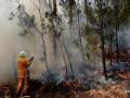 Австралия выделит 1,5 млрд долларов на борьбу с последствиями пожаров