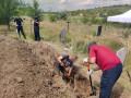 Под Славянском нашли захоронение 2014 года с неопознанными телами