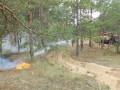 В Украине чрезвычайная пожарная опасность