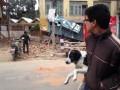 В Непале произошло мощное землетрясение: погибли не менее 150 человек