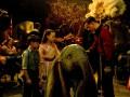 Летающий слоненок: Вышел впечатляющий трейлер киноадаптации Дамбо
