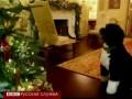 Собака Обамы проверяет елки в Белом доме