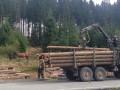 На Закарпатье грузовик упал в реку: Погибли 5 лесорубов