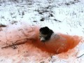 На морозе и в окопах: учения батальона Північ