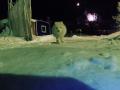 В России полярная лиса украла камеру
