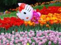 Синоптики: Ранней весны не будет, летом ожидается жара
