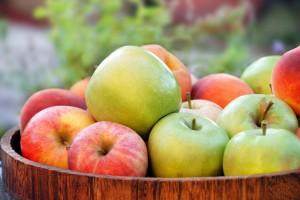 Украина стала закупать рекордное количество яблок