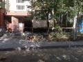 В Белой Церкви от взрыва в многоэтажке пострадал человек