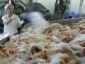 Украина и Еврокомиссия пересмотрели договор о поставках курятины