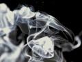 Под Львовом угарным газом отравилась семья с двумя детьми