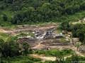 Вырубка лесов Амазонии ускорилась в два раза